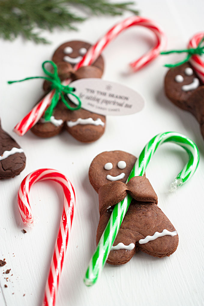 Gingerbread Men with Candy Canes Christmas Cookies for 25 Days of Christmas Cookie Exchange: Christmas time is here! Yay! That means cookies!! I love baking and throwing parties! I love the idea of a cookie exchange. It really is genius! Hosting a cookie party for close family and friends sharing cookies and new recipes! I think this will be a new Holiday tradition for sure! Pinning for later!
