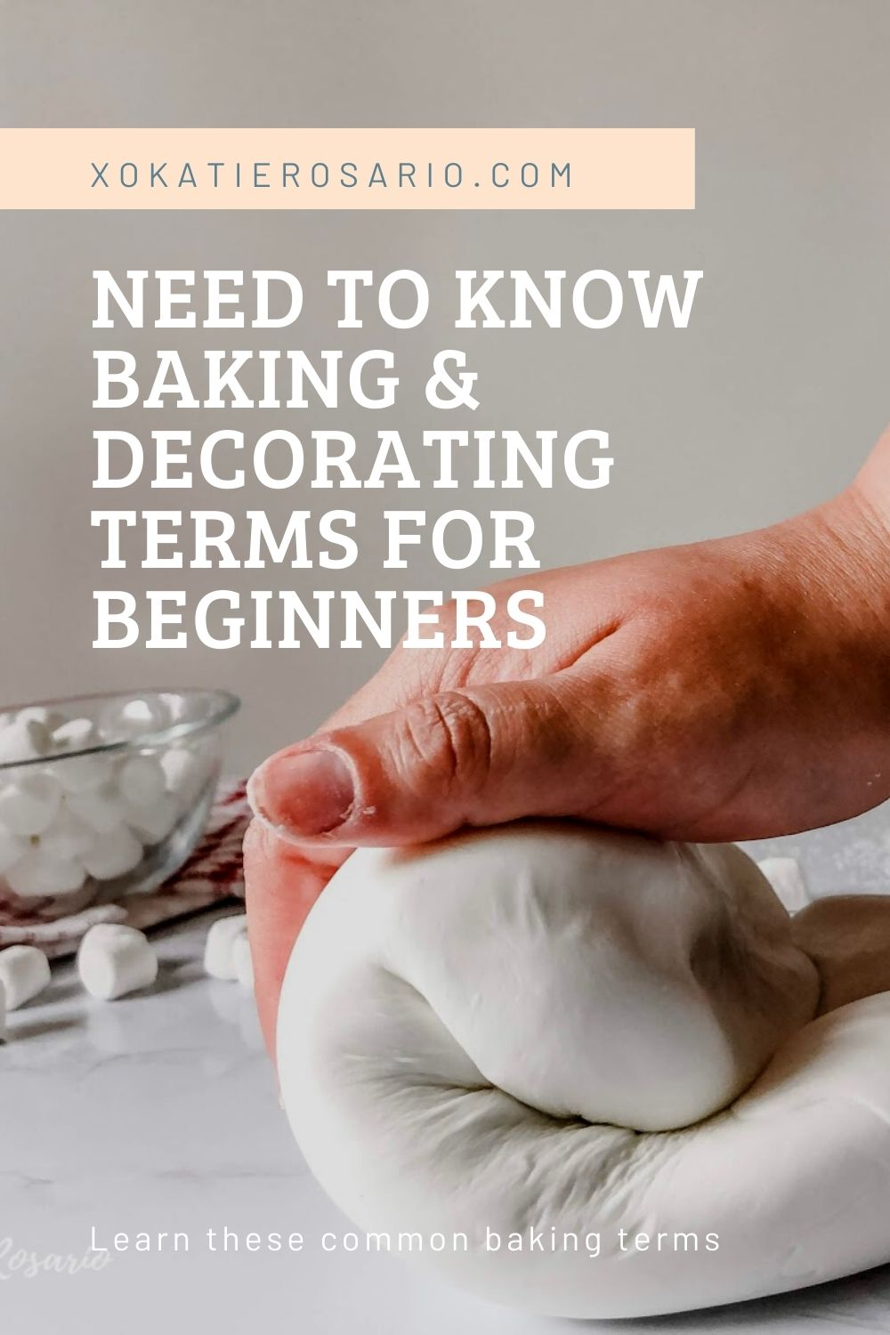 As a beginner baker, it's easy to get frustrated by all the terms, jargon, or phrases used in recipes and tutorials. Today we'll go over baking and cake decorating terms that you should know before starting. Created by Katie Rosario, XOKatieRosario creates beautiful cake decorating techniques that are easy for beginners and strategically designed for any home baker. #xokatierosario.com #cakedecoratingcourse #xokatierosario #katierosariocakes #cakedecoratingtips #beginnerbaker #bakingterms